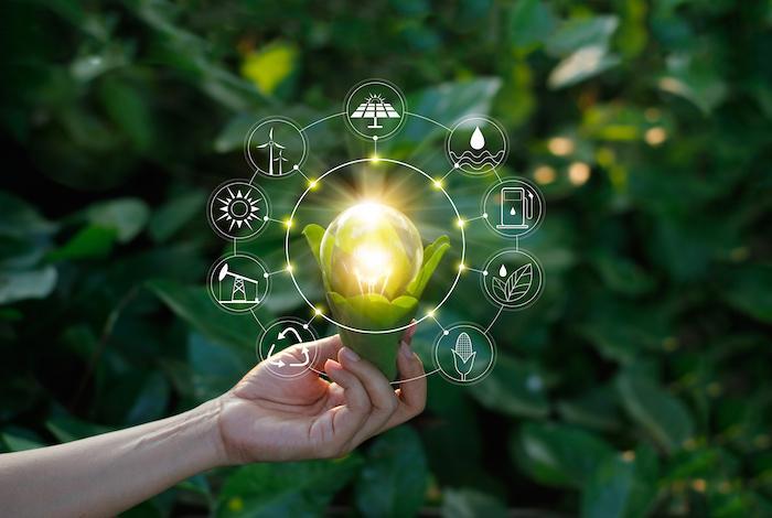 Les combustibles liquides renouvelables